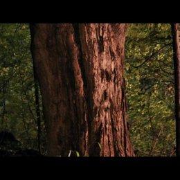 Gesicht im Baum - Szene Poster