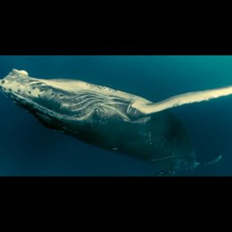 Unsere Ozeane - Dvd Trailer Poster