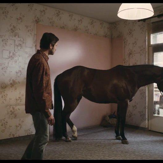Das Pferd auf dem Balkon - Trailer Poster