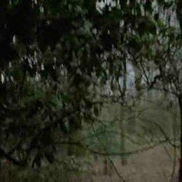 Herz ist ein dunkler Wald - Trailer