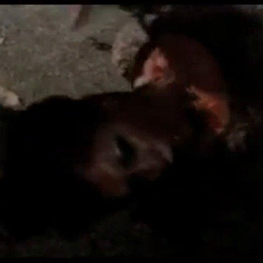 Von der bösen Art (BluRay-/DVD-Trailer) Poster