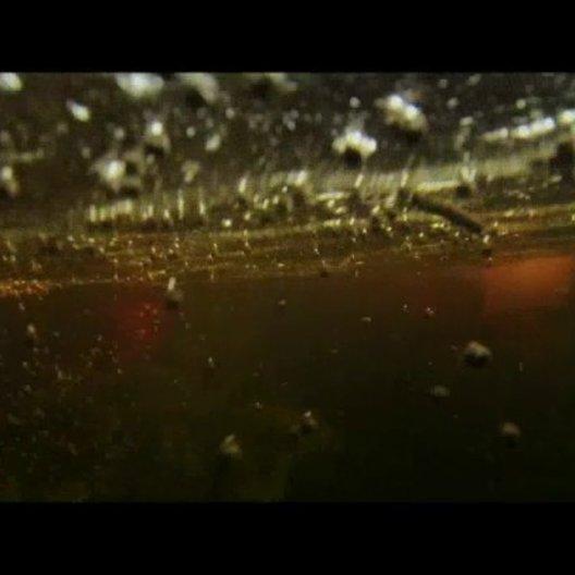 10 Milliarden - wie werden wir alle satt? - Trailer