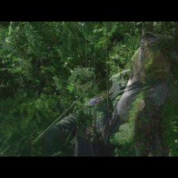 Das Geheimnis der Bäume (VoD-/BluRay-/DVD-Trailer) Poster