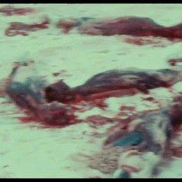 Greenpeace gegen Robbenschlächter - Szene