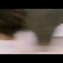 Shaolin Kickers - Trailer