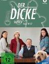 Der Dicke - Staffel 4, Folge 40-52 Poster