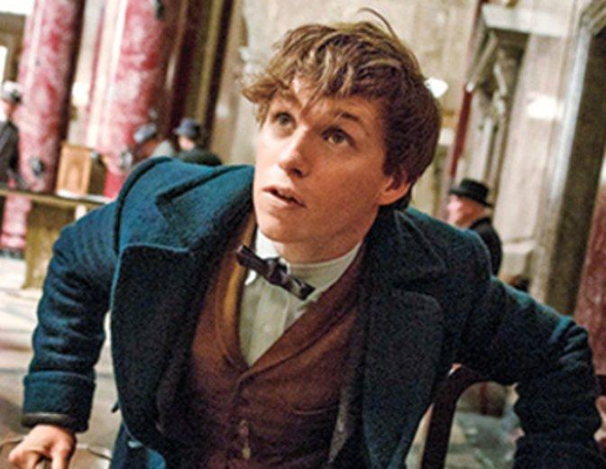 Harry Potter Phantastische Tierwesen Film