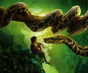 "Kinocharts: ""The Jungle Book"" startet so richtig durch"