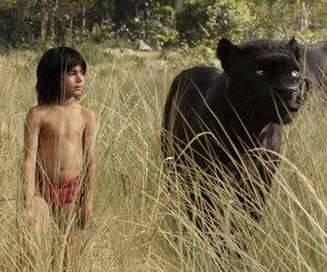"""Kinocharts: """"The Jungle Book"""" bleibt auf der Überholspur"""
