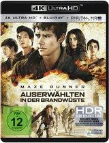 Maze Runner - Die Auserwählten in der Brandwüste Poster