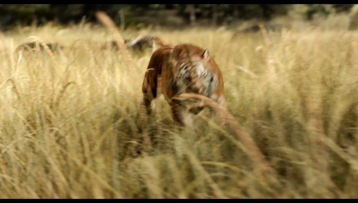 The Jungle Book - Filmtipp Poster