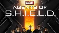 Marvel's Agents of S.H.I.E.L.D. startet im Mai im Free-TV & Stream