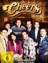 Cheers - Die komlette achte Season (4 Discs) Poster