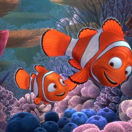 """""""Findet Nemo"""": Pixar-Film führt fast zum Aussterben von Clownfischen"""