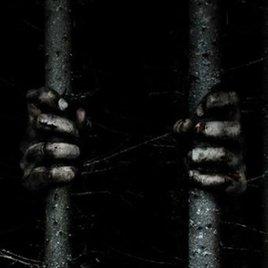 """""""The Woods"""": Gruseliger erster Trailer zum Horrorfilm macht Lust auf mehr"""