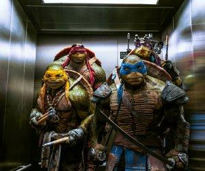 Teenage Mutant Ninja Turtles 2: Fortsetzungen kommen auch, wenn der Film floppt