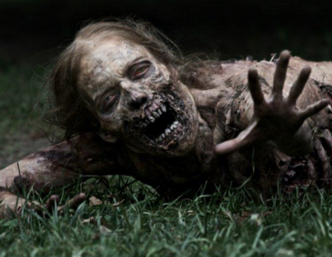 The Walking Dead Streuner
