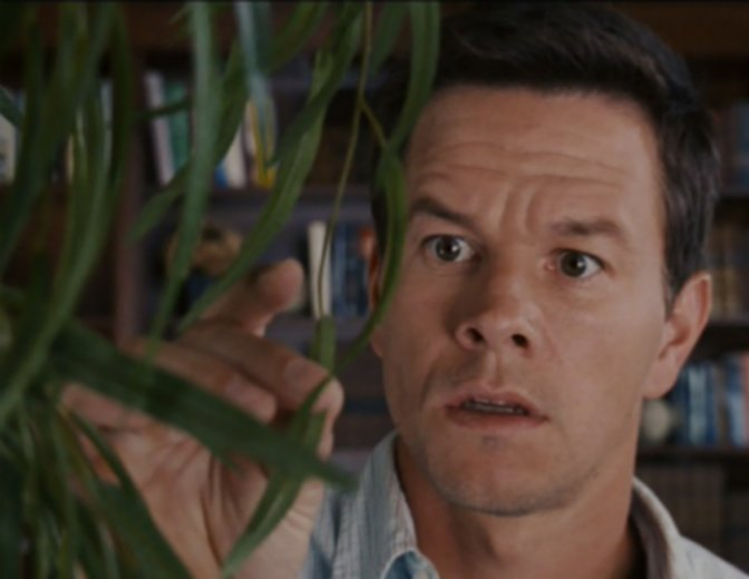 Mark Wahlberg The Happening