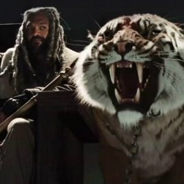 """The Walking Dead"" Staffel 7: Wer sind Ezekiel, Shiva und The Kingdom?"
