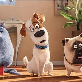 """""""Pets"""" - die Kritik"""