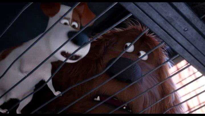 Duke und Max treffen Snowball - Szene Poster