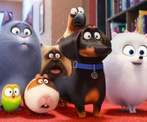 """Kinocharts: Die knuffigen """"Pets"""" erobern Deutschland"""