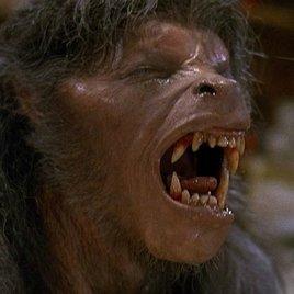 """""""American Werewolf"""": Kult-Horror bekommt seine Neuauflage"""