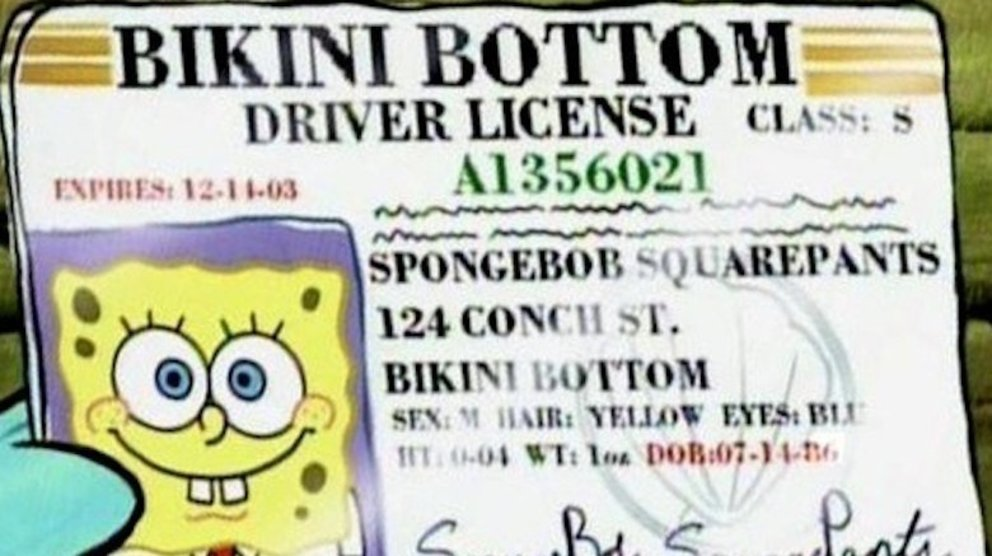 Spongebob Driver License