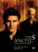 Angel - Jäger der Finsternis: Season 5.2 Collection (3 DVDs) Poster