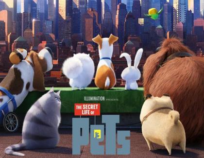 Wann Kommt Pets Im Kino