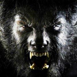 """Monsterfilm """"The Wolf Man"""" soll von """"The Expendables""""-Macher zum Leben erweckt werden"""