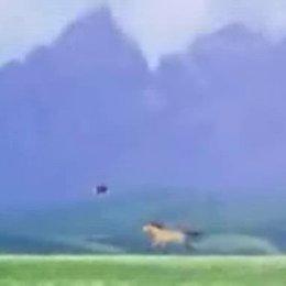 Spirit - Der wilde Mustang - Trailer Poster