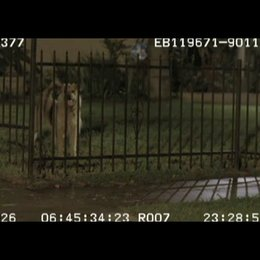 Filming a dog barking and running - OV-Featurette Poster