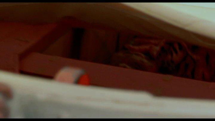 Life of Pi: Schiffbruch mit Tiger - Trailer Poster