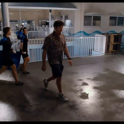 Dolphin Tale 2 - Trailer Poster