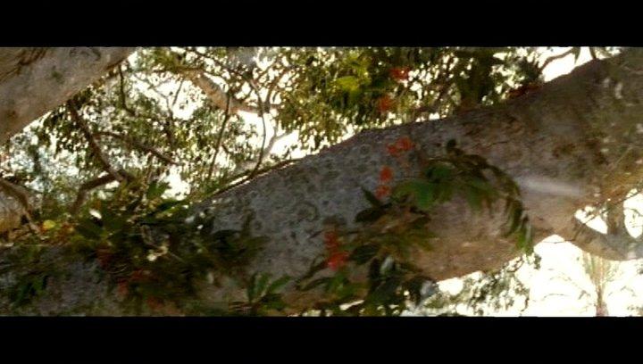 Der Baum gefährdet das Haus - Szene Poster