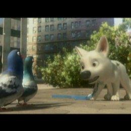 Die Tauben - Szene Poster