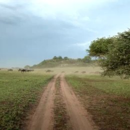 Die Wanderbewegung der Herden - Szene Poster