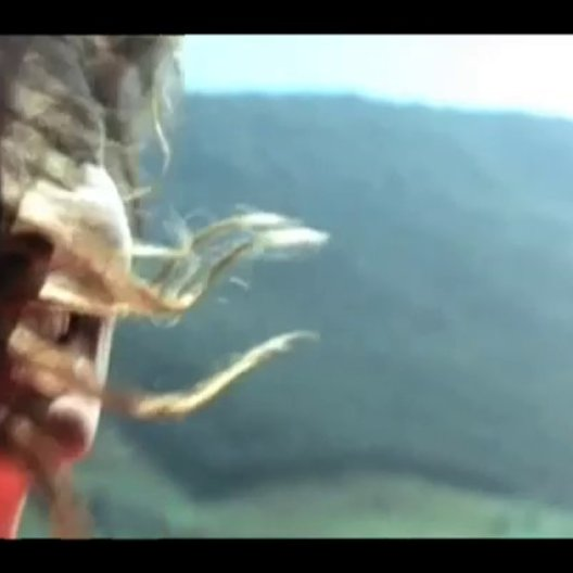 Schmetterling und Taucherglocke (DVD-Trailer) Poster