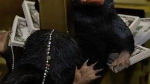 """Kinocharts: """"Phantastische Tierwesen"""" bleibt dem Erfolg der """"Harry Potter""""-Filme treu"""