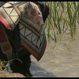 Reisfelder in China - Szene Poster