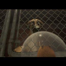 Animal Rescue - Szene Poster