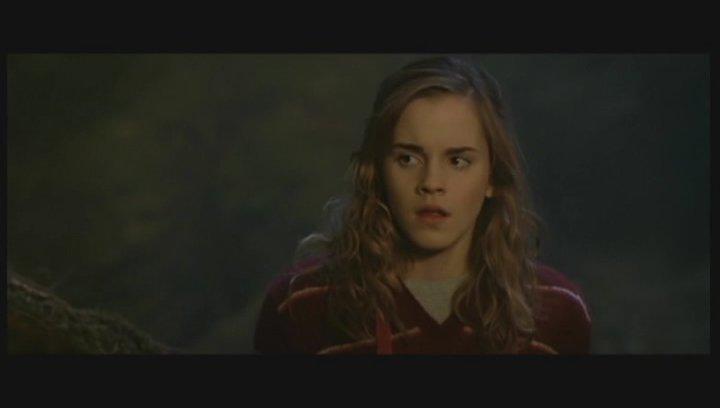 Harry Potter und der Orden des Phönix - Trailer Poster