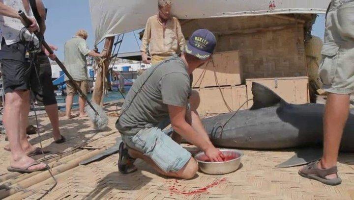 Der Hai wird gefangen - Making Of Poster
