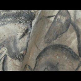 Der Herzschlag der Höhle - Szene Poster