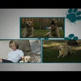 Animal Adoption - OV-Featurette Poster