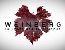 Weinberg Tv Serie