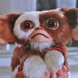 """""""Gremlins 3"""": Die putzigen Horror-Monster sollen zurückkehren!"""