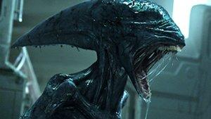 """""""Alien: Covenant"""": Mysteriöses Bild stellt Fans vor Rätsel"""