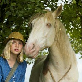 Wendy 2 - Gibt es eine Film-Fortsetzung für die pfiffige Pferdeliebhaberin?